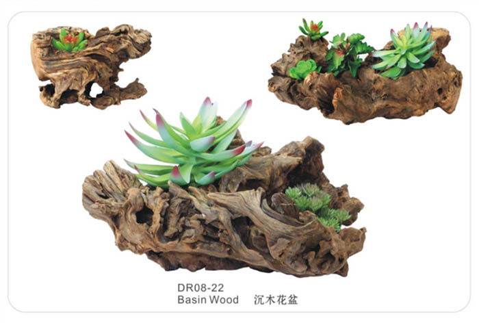 China Manufacturer Bonsai Wood Bonsai Driftwood